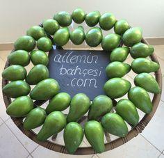 Zutano Avocados Fruit, Food, Eten, Meals, Diet