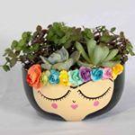 Painted Plant Pots, Painted Flower Pots, Clay Pot Crafts, Diy And Crafts, Mexican Patio, Flower Pot People, Succulent Pots, Succulents, Cactus Y Suculentas