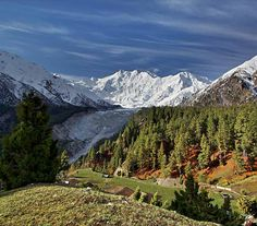 Fairy Meadows i Pakistan