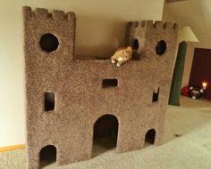 DIY Plywood Cat Castle