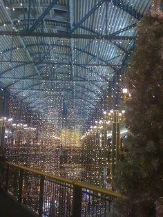 Holiday lights at MOA