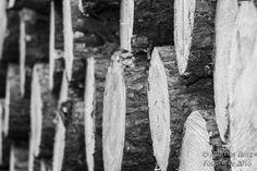 Holz, Holzstapel, Energie, Natur, Wald