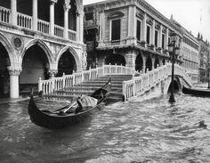 Acqua Alta (il quattro novembre 1966), Venezia
