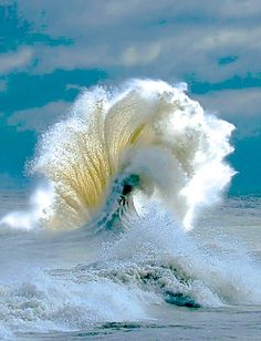 text 27785561683 Email com www mamaspiritual www linkedin com is part of Waves - All Nature, Science And Nature, Amazing Nature, No Wave, Ocean Pictures, Nature Pictures, High Pictures, Water Waves, Sea Waves