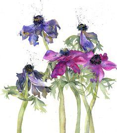Fading Anemones, Vivienne Cawson