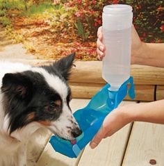 Handi-Drink Pet Water Bottles - Supplies your dog with fresh water anywhere you travel!