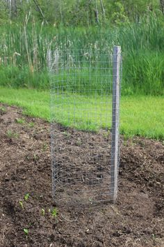 Growing Potatoes in Towers Garden Hoe, Tower Garden, Garden Tools, Garden Ideas, Container Gardening, Gardening Tips, Planting Potatoes, Cucumber Plant, Peat Moss