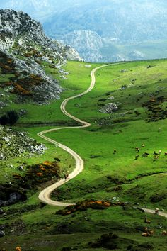 Winding path - Asturias - Spain #isadoreapparel #roadisthewayoflife #cyclingmemories