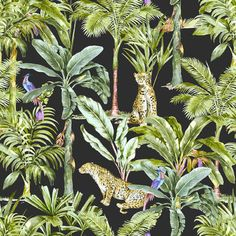 Jungle – Behang van de hoogste kwaliteit – Photowall Plant Leaves, Barn, Tropical, Plants, Converted Barn, Plant, Barns, Shed, Planets