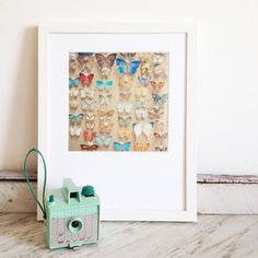 The Butterfly Collection Photographic Print by Cassia Beck Photography £11
