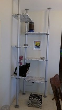 This may not be particularly original, nor even that much of a hack. But we are still proud of our Cat Feeding Station. We've always had multiple cats and dogs. Cat dishes were spread around the kitchen, and the dogs had to be shooed away to allow the