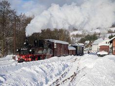 Winterdampf bei der Preßnitztalbahn (m14B) - Deutschland - www.bimmelbahn-forum.de 17.1.2017