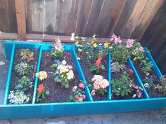 Up-cycled an old wooden bookshelf into a cute, teal flower garden for the patio. Success!!