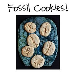 Grade 4 learns about rocks and minerals.  How fun would it be to make fossil cookies??