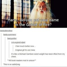 Harry potter did you put your name in the Goblet of Fire. Fixed it