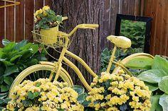 7 Creative ways to use old wheelbarrows and a bike in the garden   empressofdirt.net