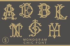 Monogram Chic Font - Display Our Monogram Chic font is a collection of interlocking monograms created by simply keying in the 2 letters desired. Typing AB or BA gives you the beautiful AB interlocking monogram. Design Typography, Typography Fonts, Hand Lettering, Logo Design, Script Fonts, Game Design, Monogram Fonts, Monogram Letters, Art Deco Monogram