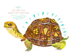 Tortoise: Magnificent Creatures 8x10 print by thewheatfield on Etsy, $18.00