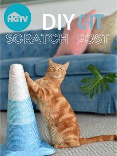 DIY Cat Scratching Post>> http://www.hgtv.com/videos/diy-cat-scratching-post-0261910?soc=pinterest