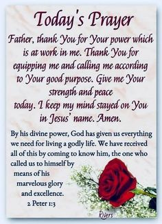 Today's Prayer. Let's us pray . Good Morning God Quotes, Morning Greetings Quotes, Good Morning Messages, Happy Weekend Quotes, Thursday Quotes, Morning Thoughts, Prayer Scriptures, Bible Prayers, Faith Prayer