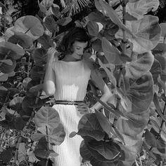 Wenda Parkinson, photo by Norman Parkinson, Vogue 1957