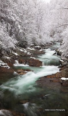The beautiful Smoky Mountains during winter.
