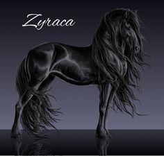 Zyraca by Vizseryn on DeviantArt Cute Horses, Pretty Horses, Horse Artwork, Most Beautiful Horses, Painted Pony, Black Horses, Friesian Horse, Horse Drawings, Anime Oc