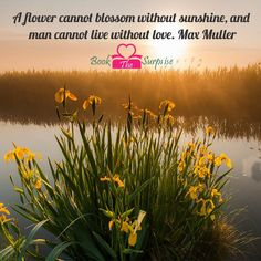 A #flower cannot blossom without sunshine, and #man cannot live without #love. Max Muller #bookthesurprise