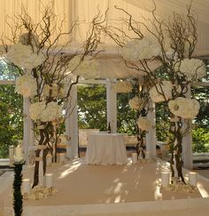 Chuppah in cream