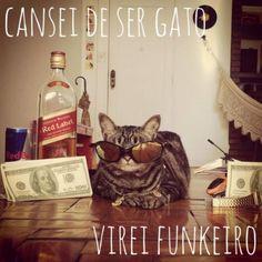 #cansei