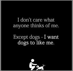 I don't care what anyone thinks of me. Except dogs. I want dogs to like me.