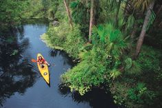 """Flowing through mangrove tunnels and estuaries, sheltered bays and lush creeks, all 190 miles of the Great Calusa Blueway are a """"must-paddle"""" for anyone able to sit in a canoe or kayak or stand on a paddleboard."""