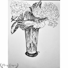 Hydrangeas, Micron pen and paper, Mary Gaspar.