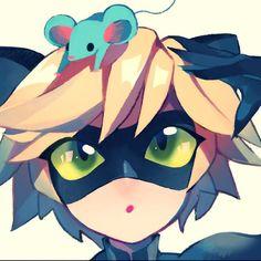 Miraculous Ladybug - Chat noir