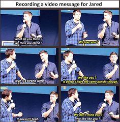 [SET OF GIFS] Misha and Jensen convention panel at JIB2013
