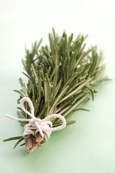 Rosemary –   use to cleanse a space for births, marriages and deaths. Banishment of negative  energies and promoter of healing.