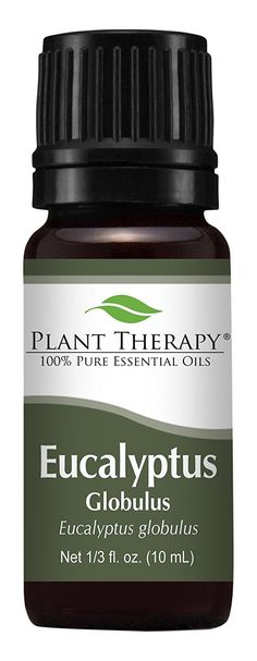 Eucalyptus Essential oil (Globulus) Essential Oil. 10 ml (1/3 oz). 100% Pure, Undiluted, Therapeutic Grade ** Special  product just for you. See it now! : essential oils