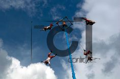 Papantla flyers/Voladores de Papantla  Contraluz Producciones