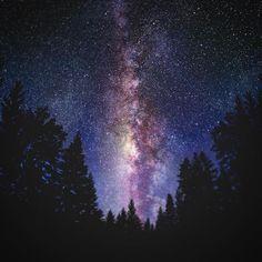 【keitaro555】さんのInstagramをピンしています。 《カナダは綺麗な星空だったなー🇨🇦 また行きたい! こんな綺麗なの初めて見た✨ #カナダ #森 #夜 #空 #夜空 #星 #きれい  #canada  #star  #nihgt #sky #forest #scenery》