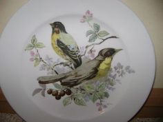 Schumann-Bavaria-Porcelain-Plate-Yellow-Breasted-Bird-Arzberg-Germany
