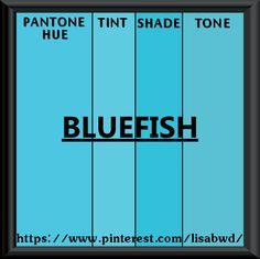 PANTONE SEASONAL COLOR SWATCH  BLUEFISH