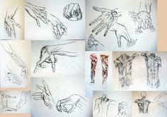 anathomy Triangle, Tattoos, Tatuajes, Tattoo, Tattos, Tattoo Designs