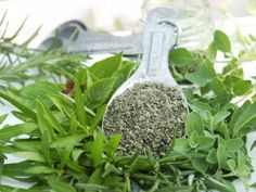 Oregano is a kitchen staple. It brings a savory warmth to your favorite tomato sauce, and is used in many ...