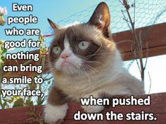 gotta love grumpy cat!