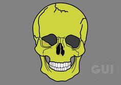 Skull illustrator