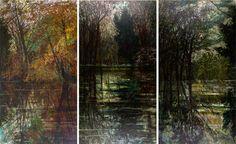 Victoria Crowe at the Scottish Gallery, Edinburgh Landscape Art, Edinburgh, Contemporary Art, Landscapes, Victoria, Gallery, Distance, Artist, Trees