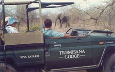 4 Day Kruger Park Safari staying at Tremisana Game Lodge Game Lodge, Places Ive Been, South Africa, Safari, To Go, Park, Games, Holiday Ideas, Outfit