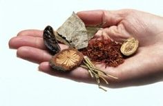 Nine Chinese Herbs Used for Pain Relief Study: Kudzu, a Chinese herb may help drinkers cut down on drinking