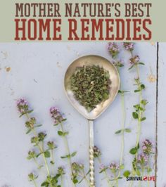 Best Home Remedies Mother Nature Has To Offer | http://homestead-and-survival.com/best-home-remedies/