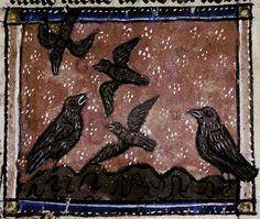 Medieval Bestiary : Partridge Gallery